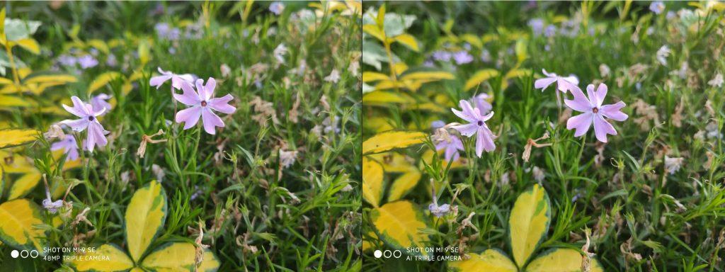 Сравнение камеры Xiaomi Mi 9 SE в режимах 48 Мп и 12 Мп