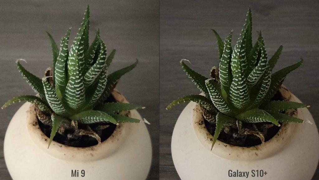 Сравнение кропов снимков Mi 9 и Galaxy S10+ при плохом свете