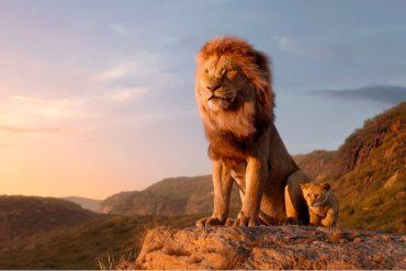 В мультфильме Король Лев был реальный кадр, снятый на камеру