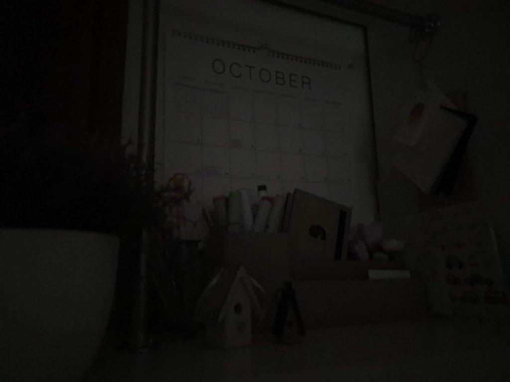 Пример фото на Samsung Note 10 в помещении при плохом освещении