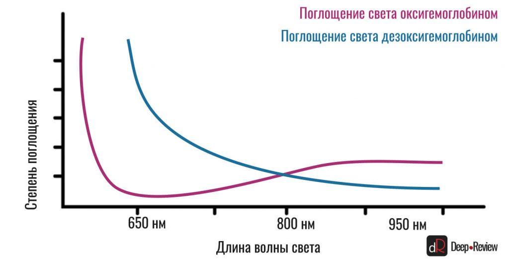 поглощение света гемоглобином