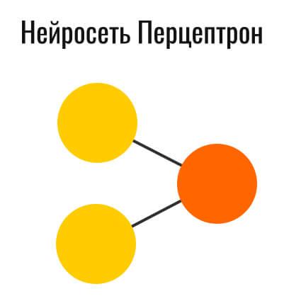 схематическое отображение перцептрона
