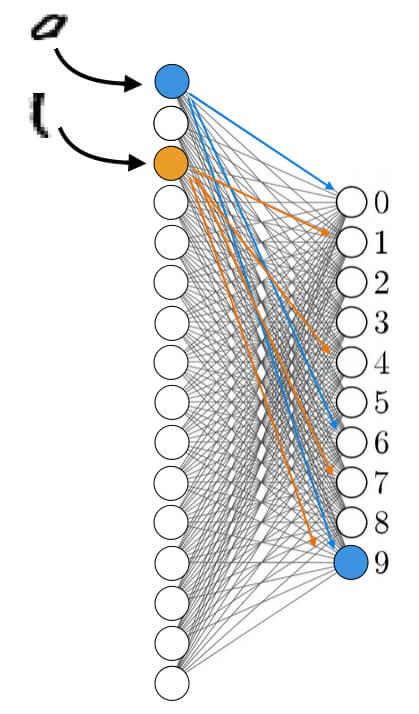 определение в последнем слое нейронов