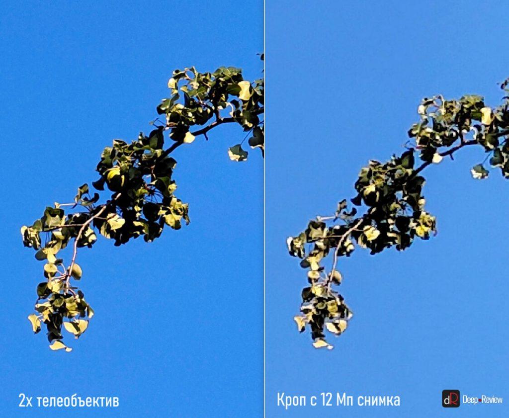 сравнение телеобъектива и основной камеры vivo x50