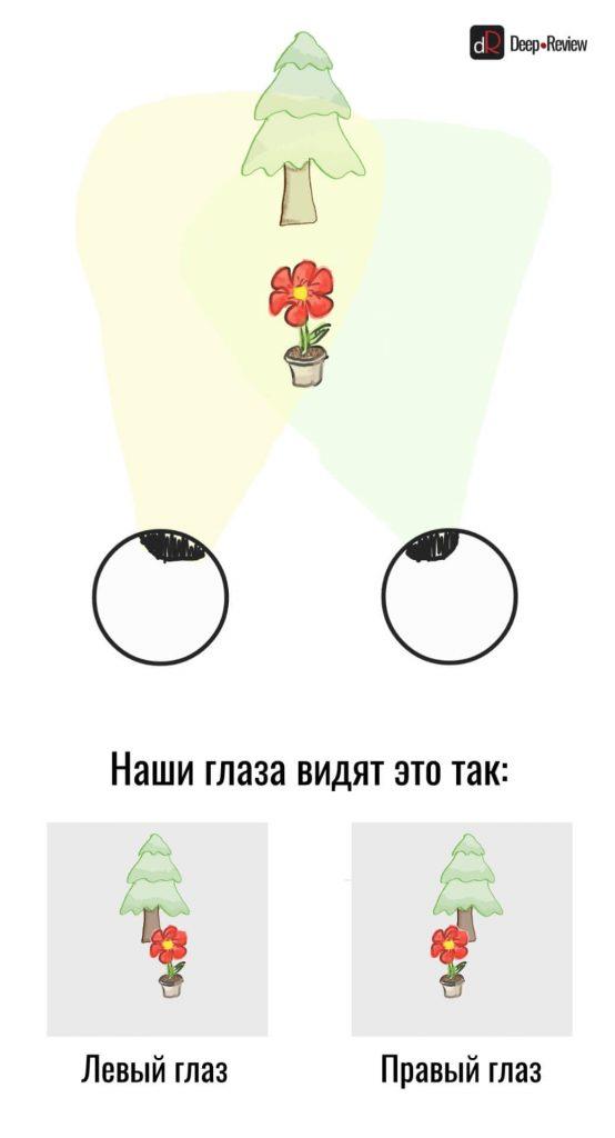 Как наши глаза воспринимают объем