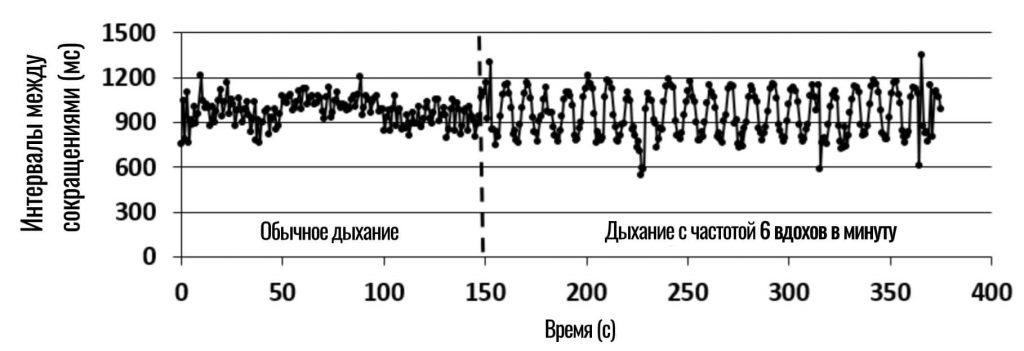 связь вариабельности сердца с частотой дыхания