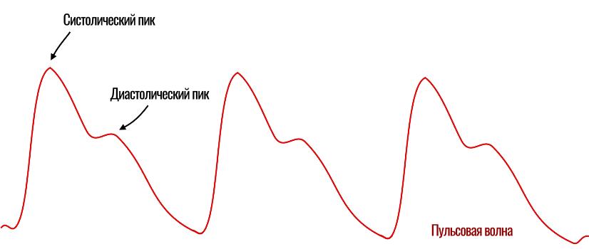 систолический и диастолический пик на фотоплетизмограмме