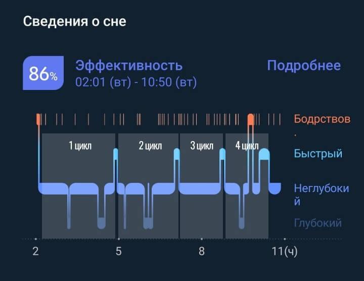 сон с разбивкой по циклам