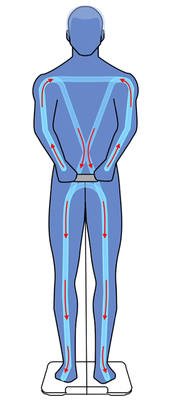 измерение биоимпеданса 8 электродов умные весы