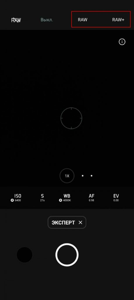 raw и raw+ режимы камеры
