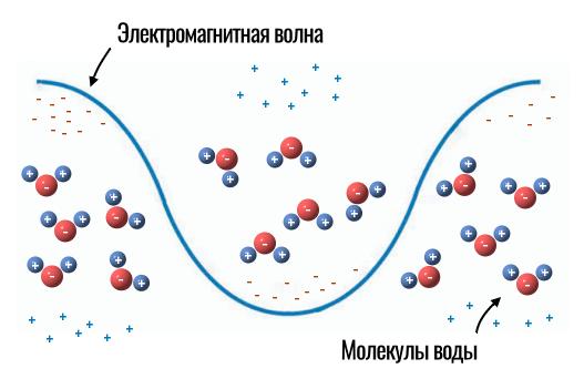 что делает электромагнитная волна с молекулами
