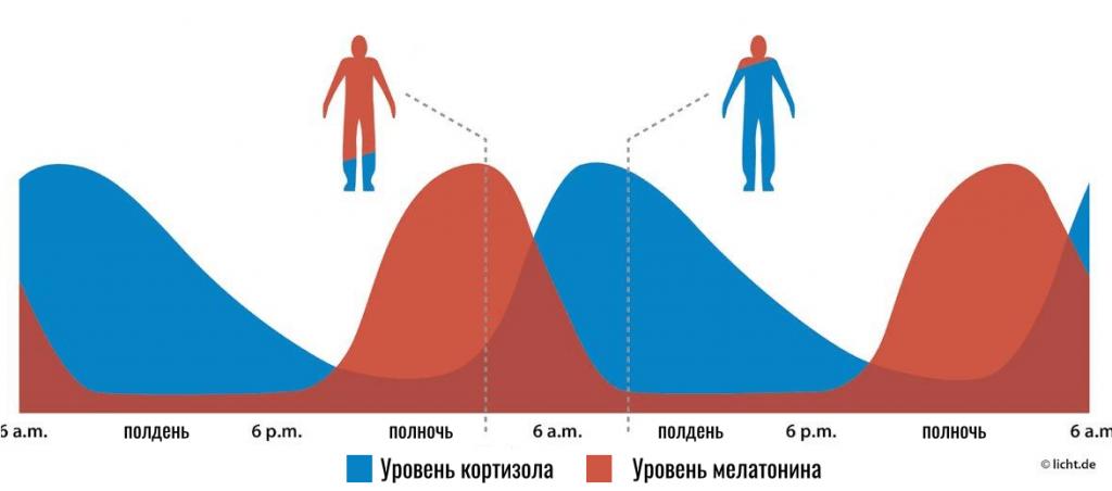 уровень кортизола и мелатонина в крови