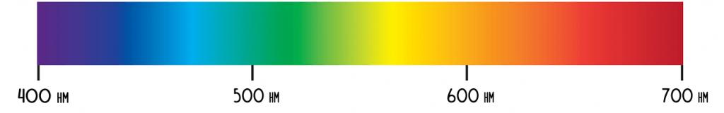 спектр всех цветов